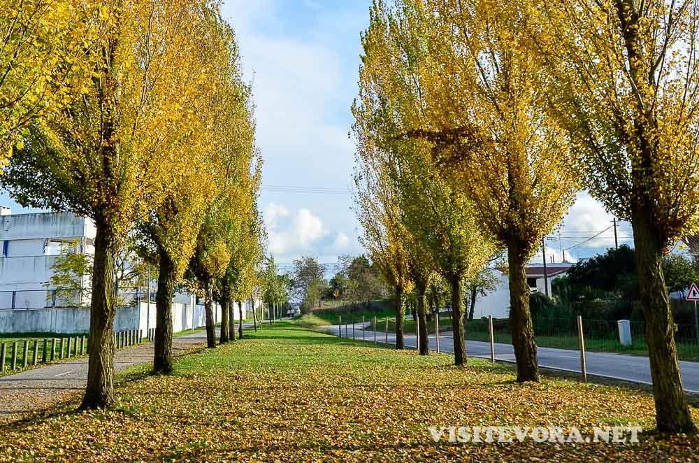 Evora Nature Trails