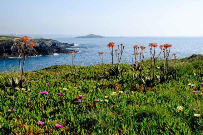 hiking portugal alentejo pessegueiro island
