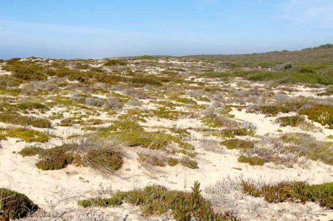 trekking alentejo dunes