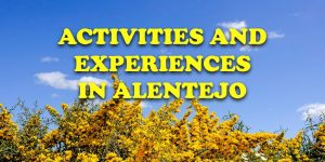 evora activities experiences alentejo