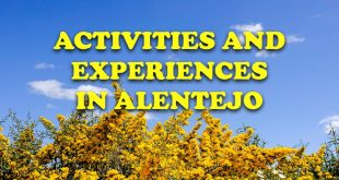 Activities and experiences in Alentejo