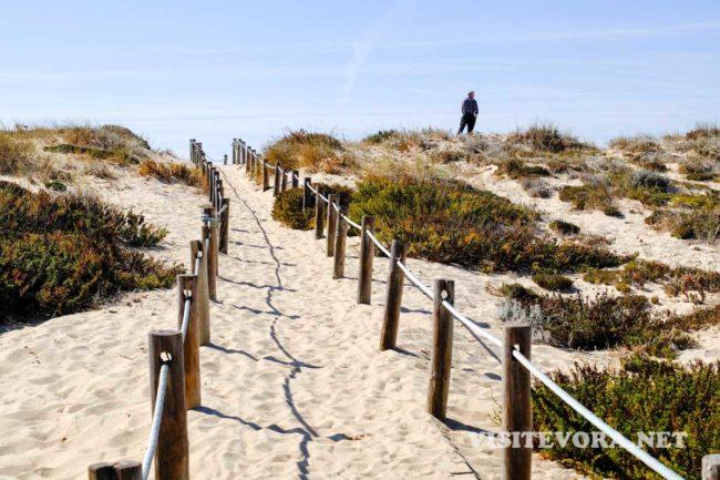 alentejo coast dunes