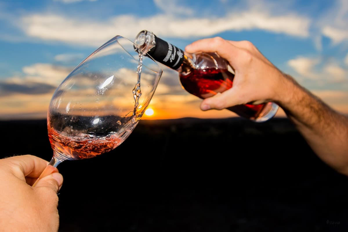 alentejo wine tasting event