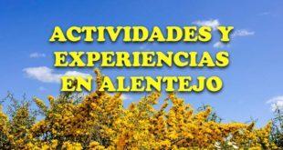 Actividades y experiencias en Alentejo, Portugal