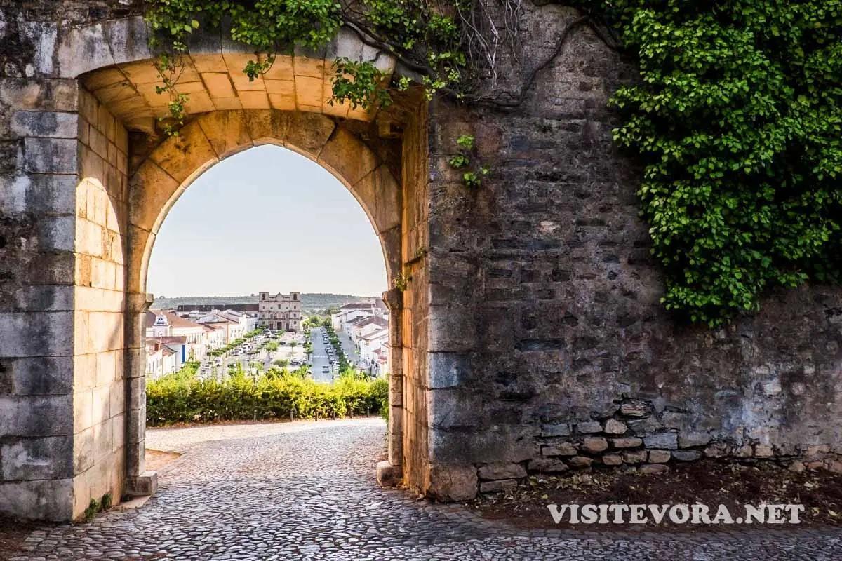 visitar vila vicosa