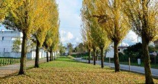 Percursos ambientais de Évora a pé e de bicicleta