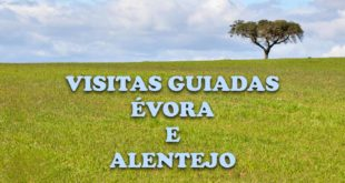 Tours no Alentejo e visitas guiadas a pé em Évora
