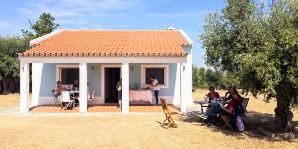 Prova de azeite, degustação de azeite no Alentejo (Portugal)