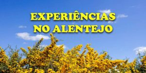 evora atividades experiencias alentejo