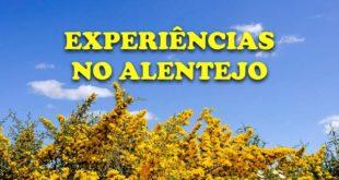 Atividades e experiências no Alentejo