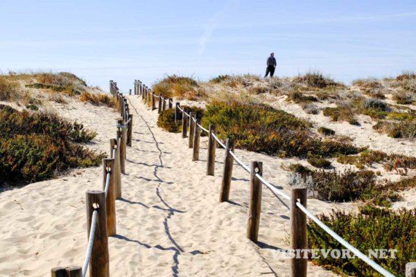 costa alentejana dunas